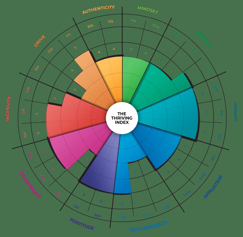 360 Survey UAE   Our Technology - The Talent Enterprise